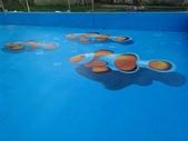3D彩繪 牆壁彩繪 3d壁畫彩繪:3D彩繪 牆壁彩繪 3D立體壁畫 壁畫 彩繪作品 (62).jpg