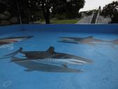3D彩繪 牆壁彩繪 3d壁畫彩繪:3D彩繪 牆壁彩繪 3D立體壁畫 壁畫 彩繪作品 (49).JPG