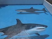 3D彩繪 牆壁彩繪 3d壁畫彩繪:3D彩繪 牆壁彩繪 3D立體壁畫 壁畫 彩繪作品 (33).JPG