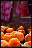 2016-10_新埔衛味佳柿餅:DSC_0071.jpg