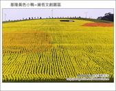 基隆黃色小鴨~擁恆文創園區:DSC_3235.JPG