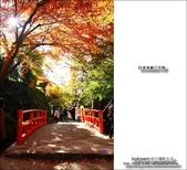 京都:三千院06.jpg