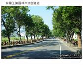 2011.10.23 銅鑼工業區樟木綠色隧道:DSC_9154.JPG