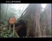 [ 北橫 ] 桃園復興鄉拉拉山森林遊樂區:DSCF7809.JPG