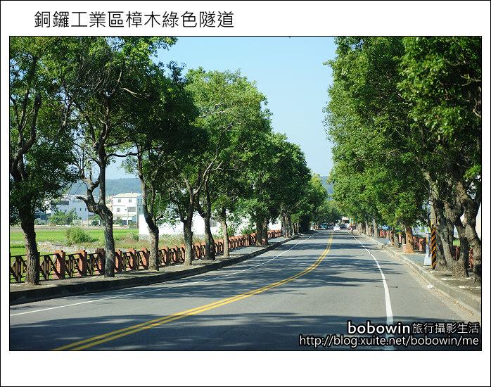 2011.10.23 銅鑼工業區樟木綠色隧道:DSC_9155.JPG