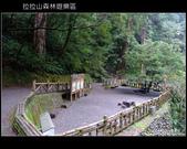 [ 北橫 ] 桃園復興鄉拉拉山森林遊樂區:DSCF7928.JPG