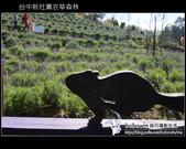 [ 台中 ] 新社薰衣草森林--薰衣草節:DSCF6456.JPG