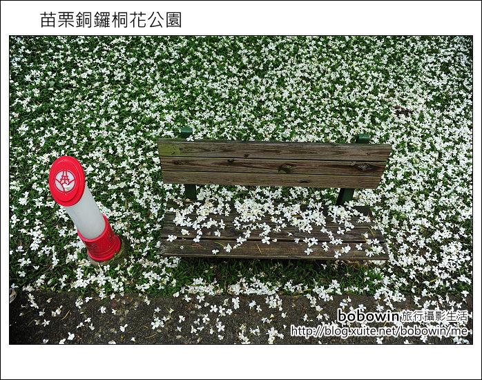 2012.04.29 苗栗桐花公園花況:DSC_1744.JPG