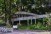 竹崎親水公園天空步道:DSC_9880.JPG