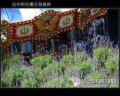 [ 台中 ] 新社薰衣草森林--薰衣草節:DSCF6629.JPG