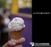[ 台中 ] 新社薰衣草森林--薰衣草節:DSCF6684.JPG