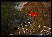 瑪陵坑溪溪瀑:DSC_8141