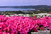 沖繩30個景點:DSC_0190.JPG