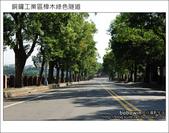 2011.10.23 銅鑼工業區樟木綠色隧道:DSC_9159.JPG