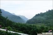新竹尖石油羅溪森林:DSC08065.JPG