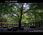 [ 北橫 ] 桃園復興鄉拉拉山森林遊樂區:DSCF7933.JPG