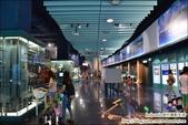 基隆海生館~適合大朋友的博物館:DSC_2163.JPG