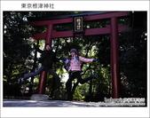 日本東京之旅 Day4 part2 根津神社:DSC_0304.JPG