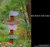 苗栗 ] 薰衣草森林--明德水庫店 :DSCF3310.JPG