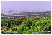 彰化月光山舍景觀餐廳:DSC_4002.JPG