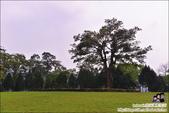 老官道休閒農場露營區:DSC_0849.JPG