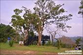 老官道休閒農場露營區:DSC_0856.JPG