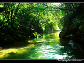 瑪陵坑溪溪瀑:DSC_8713