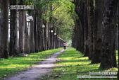 2014.08.09 宜蘭運動公園:DSC_4754.JPG