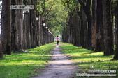 2014.08.09 宜蘭運動公園:DSC_4740.JPG