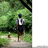 基隆姜子寮山&泰安瀑布:DSCF0426.JPG