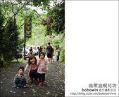 2012.04.29 苗栗油桐花坊:DSC_2107.JPG