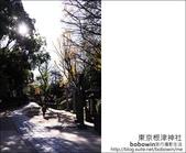 日本東京之旅 Day4 part2 根津神社:DSC_0308.JPG