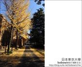 [ 日本東京自由行 ] Day4 part3 東京大學:DSC_0481.JPG