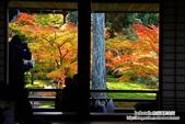京都:三千院01.jpg