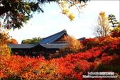 京都:東福寺.jpg
