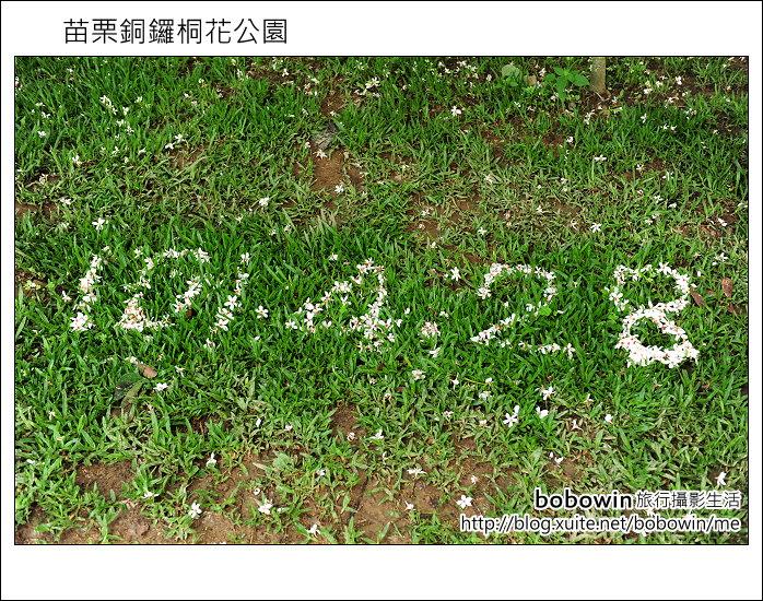 2012.04.29 苗栗桐花公園花況:DSC_1770.JPG