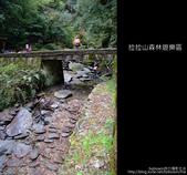 [ 北橫 ] 桃園復興鄉拉拉山森林遊樂區:DSCF7934.JPG