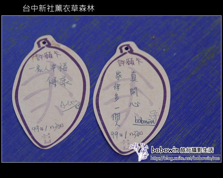 [ 台中 ] 新社薰衣草森林--薰衣草節:DSCF6687.JPG