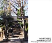 日本東京之旅 Day4 part2 根津神社:DSC_0309.JPG