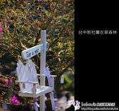 [ 台中 ] 新社薰衣草森林--薰衣草節:DSCF6630.JPG