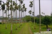 迦南美地露營區:DSC_7631.JPG