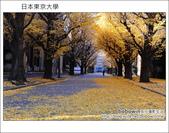 日本東京之旅 Day4 part3 東京大學學生食堂:DSC_0677.JPG