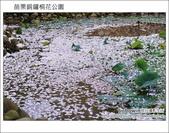 2012.04.29 苗栗桐花公園花況:DSC_1786.JPG