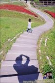 台北內湖大溝溪公園:DSC_2232.JPG
