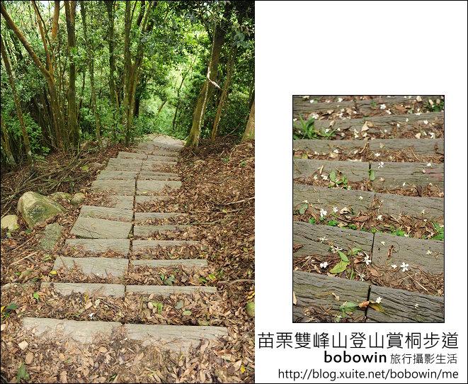 2012.04.29 苗栗雙峰山登山步道:DSC_2024.JPG