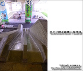 台北公館永福橋下溜滑梯:DSC_1510.JPG