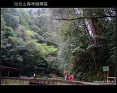 [ 北橫 ] 桃園復興鄉拉拉山森林遊樂區:DSCF7940.JPG