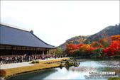 京都:天龍寺.jpg