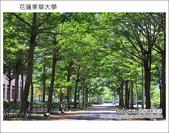 2012.07.13~15 花蓮慢慢來之旅 東華大學:DSC_2446.JPG