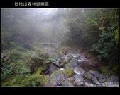 [ 北橫 ] 桃園復興鄉拉拉山森林遊樂區:DSCF7841.JPG